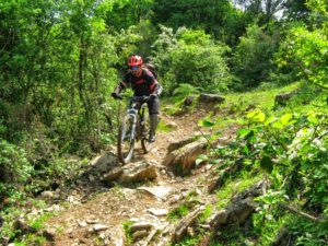 Monti della Tolfa in Mountain Bike