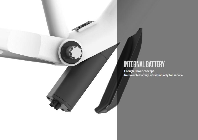 La batteria interna