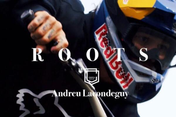 Roots - Andreu Lacondeguy